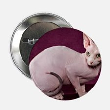 """Sphynx10 2.25"""" Button"""