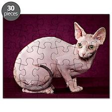Sphynx10 Puzzle