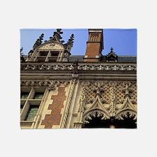Cher. Chateau de Blois. Front entran Throw Blanket