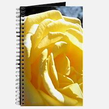 Yellow Rose.of Texas Journal