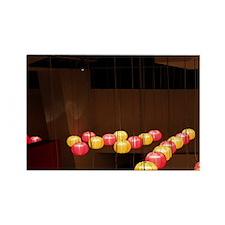 Colored Chinese lanternsQuai Bran Rectangle Magnet