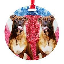 flip flops boxer Ornament