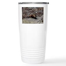 DSC_0115 Travel Mug