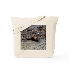DSC_0115 Tote Bag