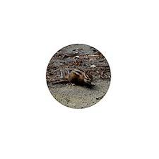 DSC_0115 Mini Button