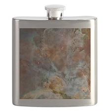 etacarinae_ipad2 Flask