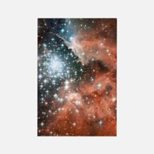 ngc3603_iTouch4 Rectangle Magnet