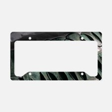 Germany, Bronze axes, Sky Dis License Plate Holder