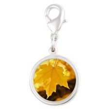 Autumn Leaves 53 Yellow Golden Silver Round Charm