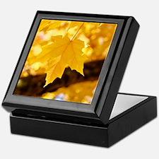 Autumn Leaves 53 Yellow Golden Glowin Keepsake Box