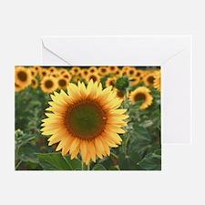 shoulderbag-016 Greeting Card