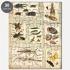 Illustrations Puzzle