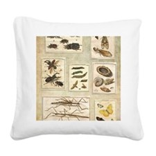 Illustrations Square Canvas Pillow