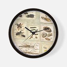 Illustrations Wall Clock