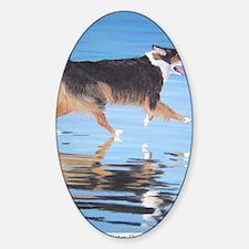 Water Dog card a shirt Decal