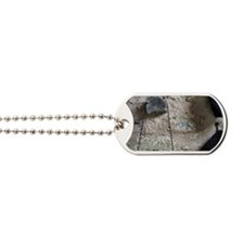 Cask and walking stick hang on stone wall Dog Tags
