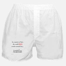 Anatolian World Boxer Shorts
