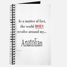 Anatolian World Journal