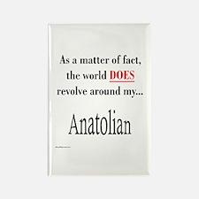 Anatolian World Rectangle Magnet