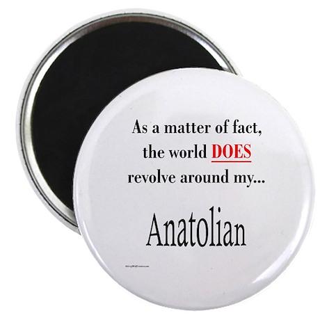 Anatolian World Magnet