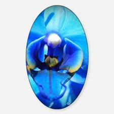 Blue Orchid Decal