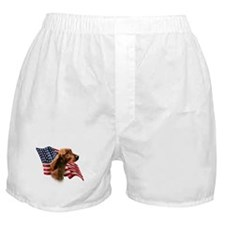 Irish Setter Flag Boxer Shorts