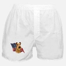 Irish Terrier Flag Boxer Shorts