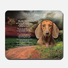 godmadedogs(oval) Mousepad