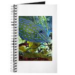 """Scrawled"" Filefish Journal"