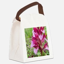 Crete. Butterfly orchid in bloom  Canvas Lunch Bag
