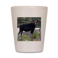11 Cover Shot Glass