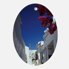 Decorations and bougainvillea red fl Oval Ornament