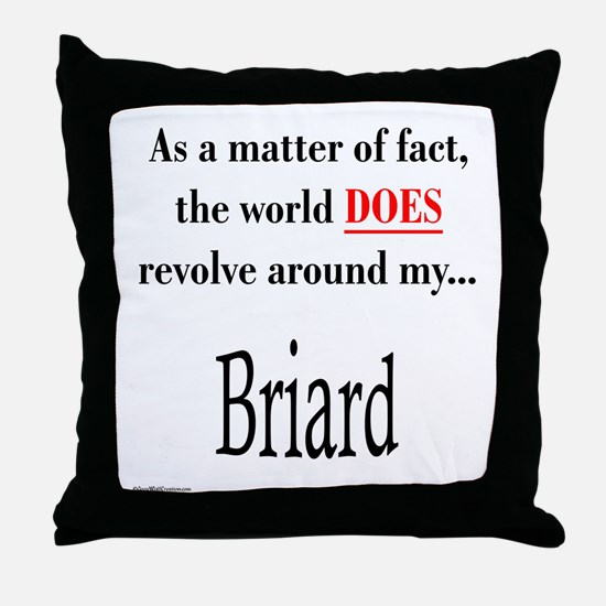 Briard World Throw Pillow