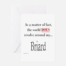 Briard World Greeting Cards (Pk of 10)
