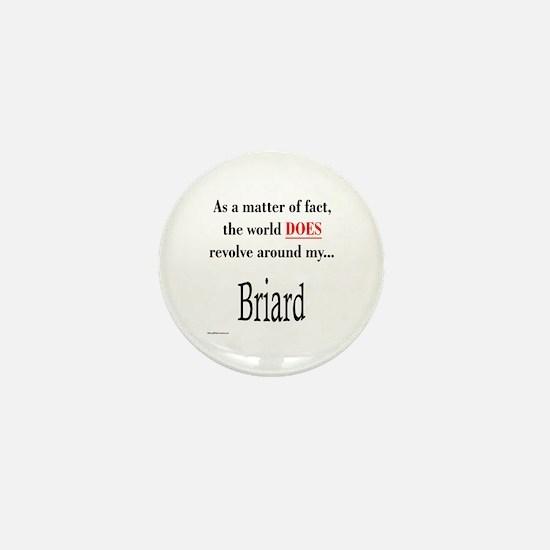 Briard World Mini Button