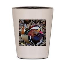 Coast_Duck1 Shot Glass