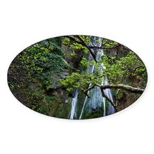 Crete. Waterfall and branches of pl Decal