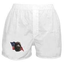 Wirehaired Griffon Flag Boxer Shorts