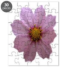 CosmosFF1 Puzzle