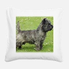 Cairn Terrier 9Y004D-024 Square Canvas Pillow
