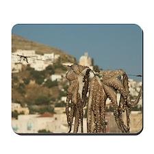 Leros: octopus drying at the port of Agi Mousepad