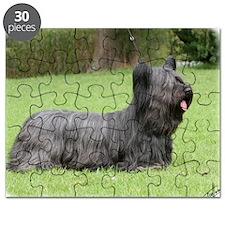 Skye Terrier 9Y766D-054 Puzzle