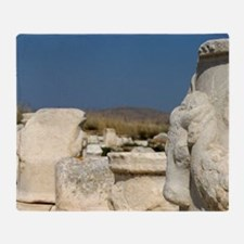 Delos. Ruins along the Sacred WayRui Throw Blanket