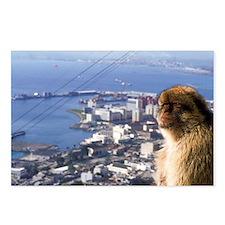 Gibralter. Gibralter ape Postcards (Package of 8)