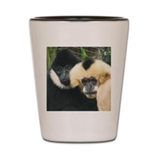 gibbons Shot Glass