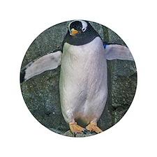 "penguin 3.5"" Button"
