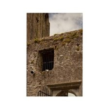 The Blarney Castle at the entranv Rectangle Magnet