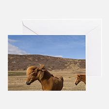 Icelandic horses, Snaefellsnes Penin Greeting Card