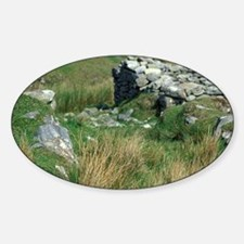 County Mayo. Sheep in ancient villa Sticker (Oval)