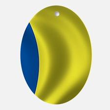 romania_flag Oval Ornament
